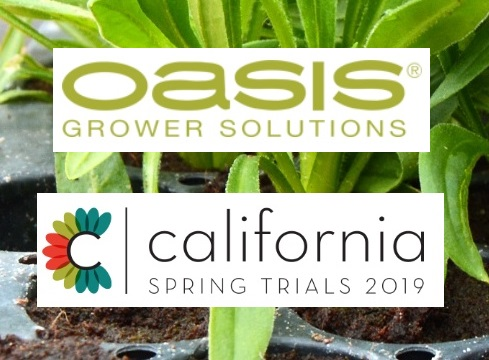 Observations From California Spring Trials 2019